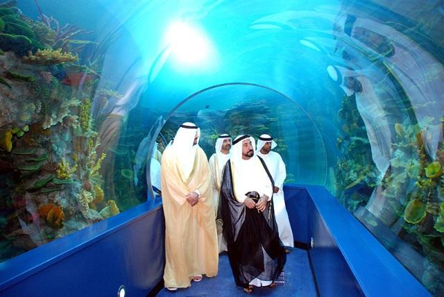 Аквариум Шарджи один из лучших в мире