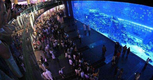 Dubai Mall Aquarium - самый большой аквариум в Дубаи