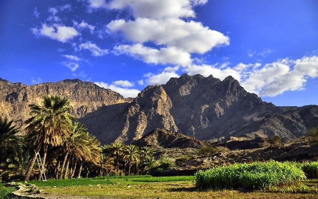 Сады Айн-Аль-Мадхаб - оазис в Фуджейре