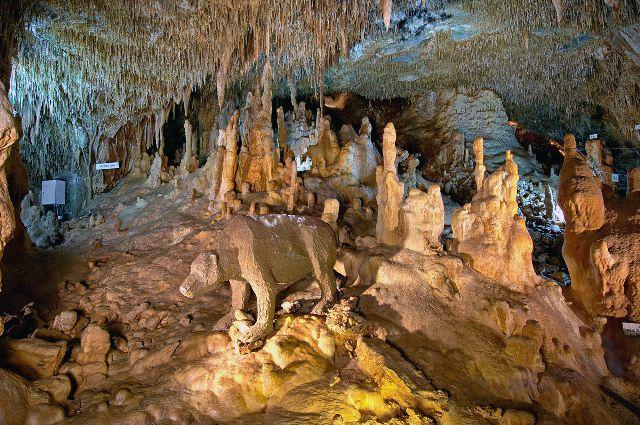 Пещера Петралона Халкидики Греция