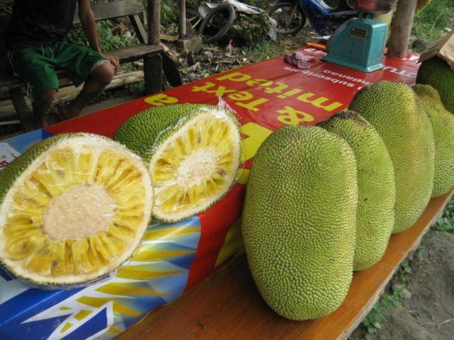 Джек-фрукт