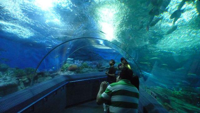 Океанариум Underwater World в Паттайе