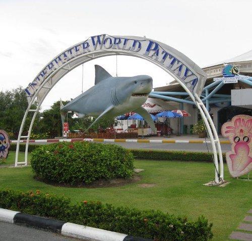 Океанариум Подводный мир Паттайя