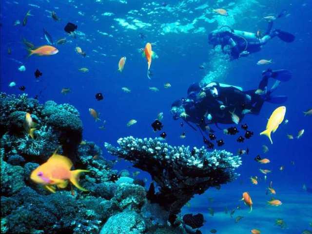 Красное море (Израиль)