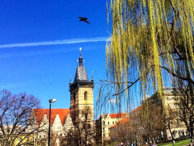 Новоместская Ратуша Прага