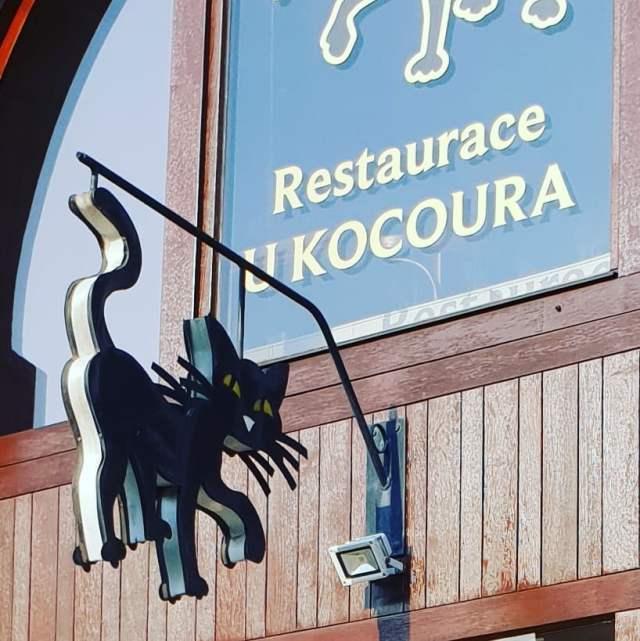 Пивной ресторан U Kocoura (У Кота)