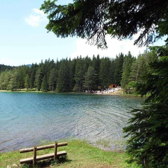 Черное озеро (Црно Езеро) в Черногории