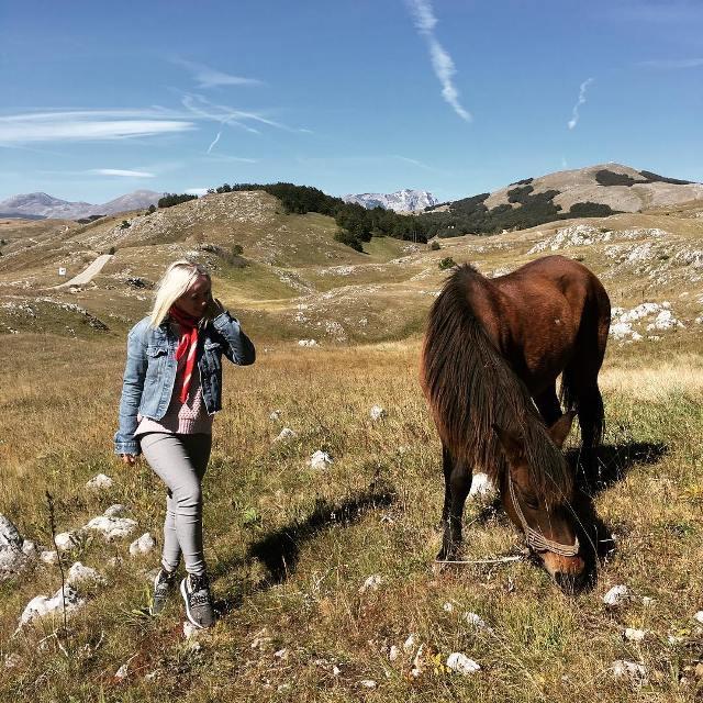 Лошадка в Дурмидоре
