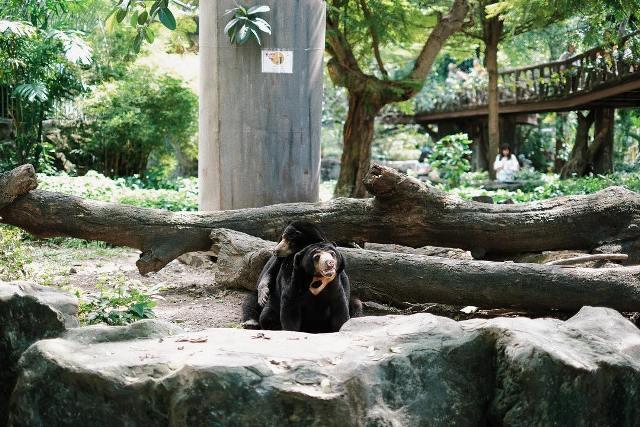 Старейший зоопарк Бангкока Dusit Zoo