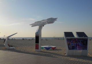 Интернет-пальмы на пляже в Дубае