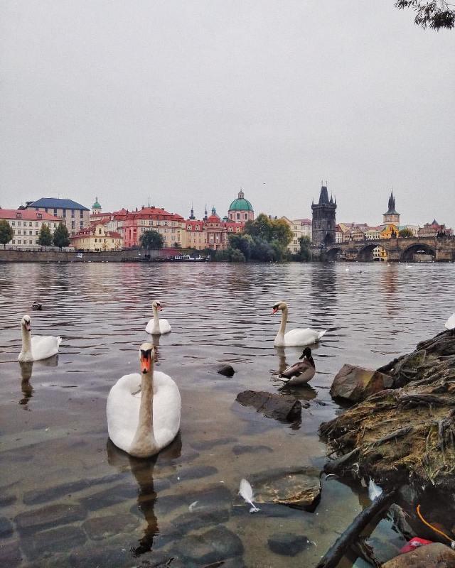 Река Влтава, Прага, Чехия