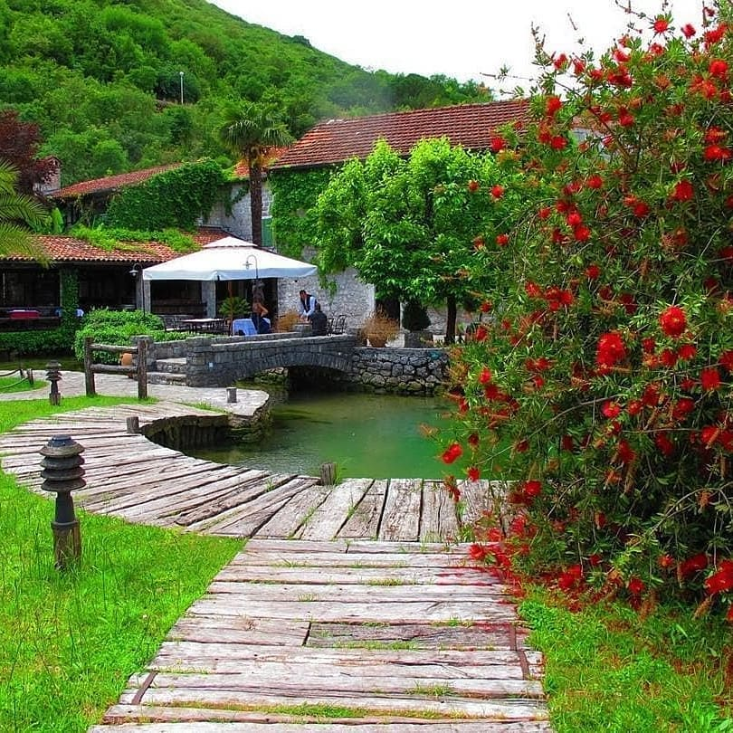 Ресторан Сatovica Mlini недалеко от Котора
