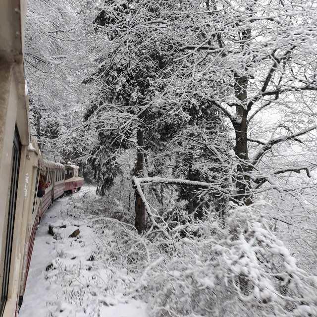 На поезде из Бакуриани в Боржоми