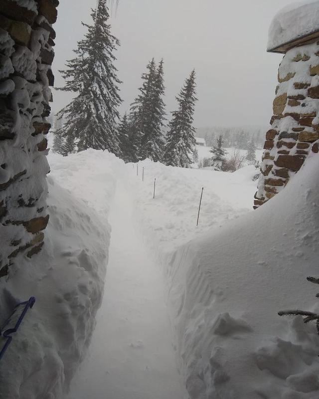 Шумава зимой