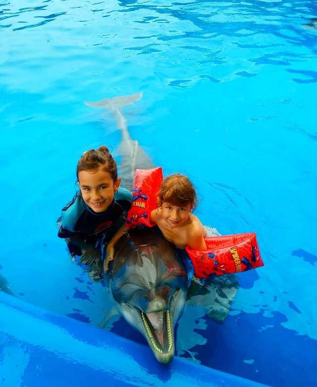 Дельфинарий в Батуми, Грузия