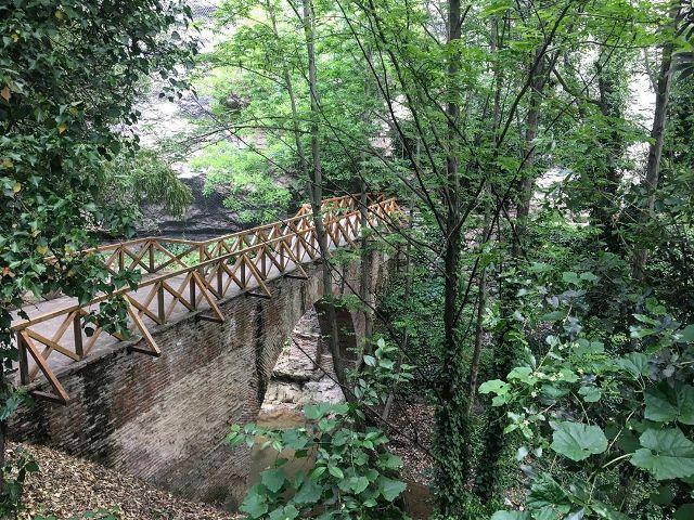 Мост в ботаническом саду Тбилиси