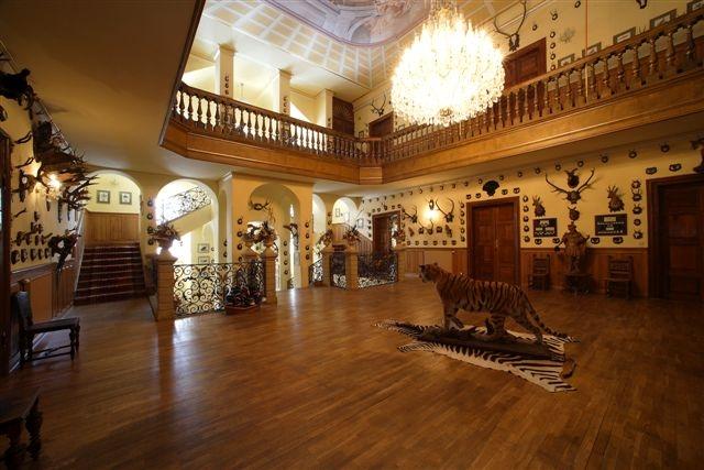 Парадный зал замка Детенице