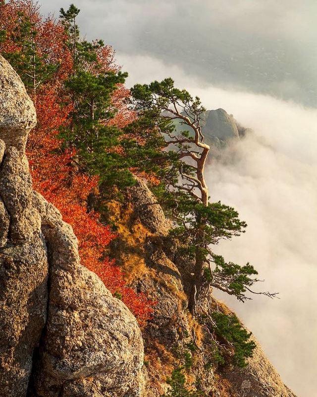 Осенний Крым прекрасен!