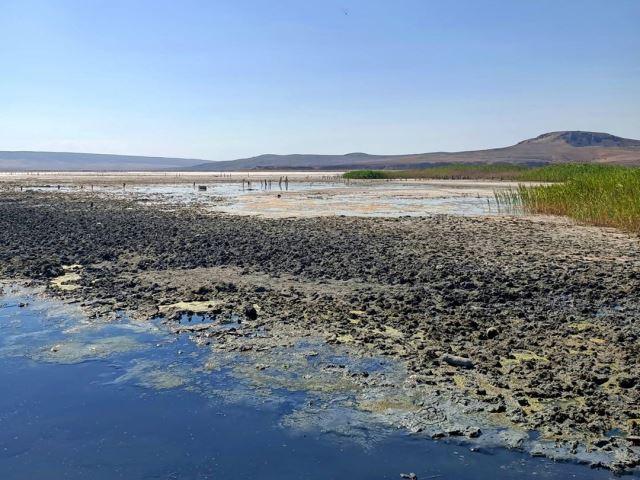 Чёрное от грязи озеро Чокрак в Крыму