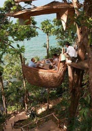 Ужин на деревьях в ресторане на острове Куд