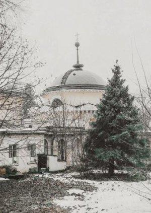Усадьба Суханово зимой