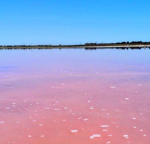 Озеро Сасык Сиваш в Евпатории